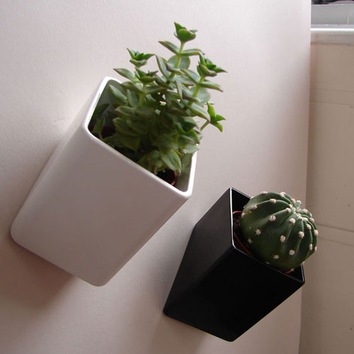Off the Wall Pots